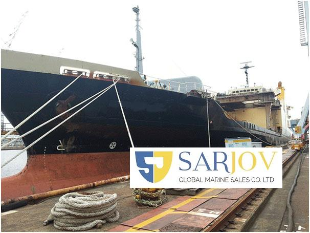 RoRo Lolo Container Vehicle Carrier